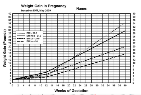 weight gain chart during pregnancy